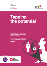 Tapping the Potential: Lessons from the Richmond Group's practical collaborative work in Somerset